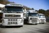 Disponemos de flota propia de camiones para realizar el transporte de mercancías